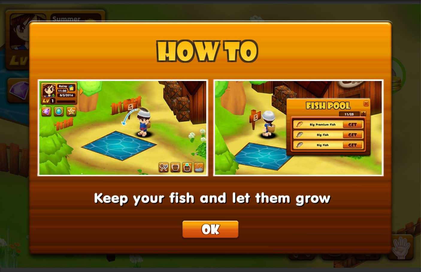 Fish pond is now available